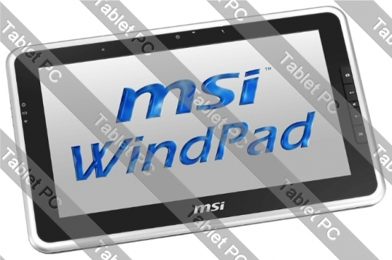 MSI WindPad 100W